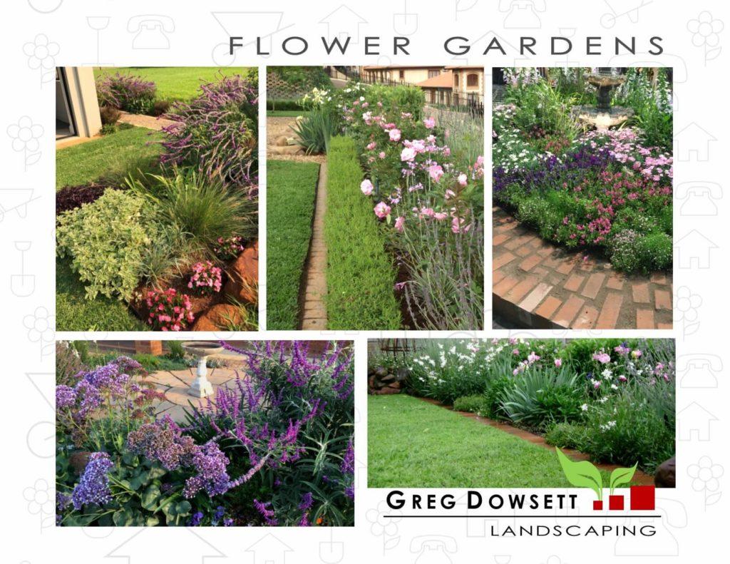 Landscaping Hillcrest, Landscaping Upper Highway, Landscaping midlands, Greg Dowsett, Gardens, English country garden, Roses, Hedges, Lavender, Salvia leucantha, St Johns Estate, Bird bath.