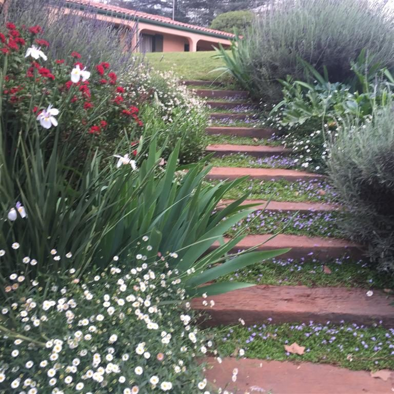 Country-garden-2: Sleeper steps in this farm garden surrounded by Herbaceous perennials and pretty ground-covers.