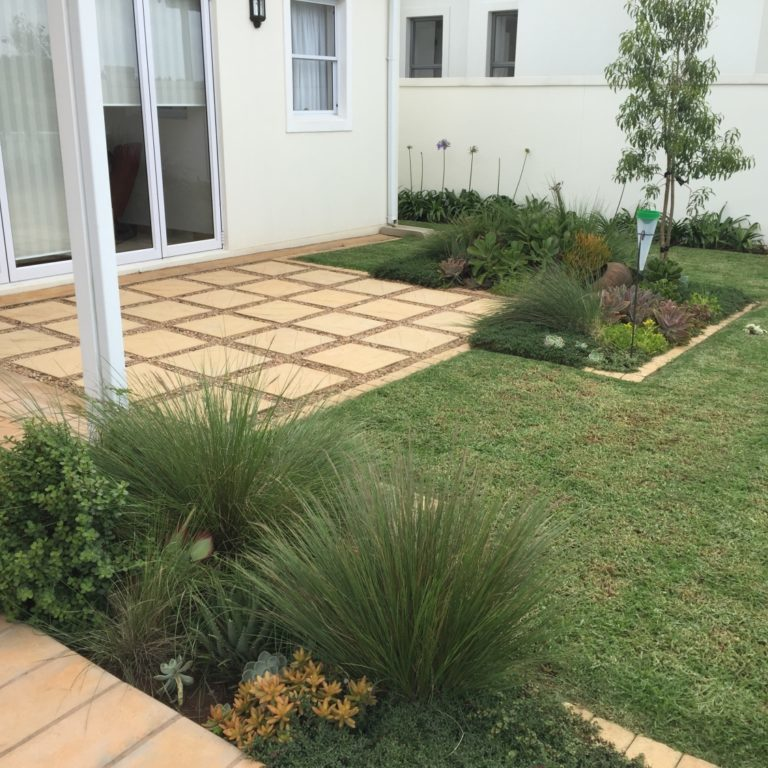 "Contemporary-small-garden-2: Bespoke contemporary designed private garden in Garlington Estate in Hilton KZN, incorporating mixed succulents and wild ""Ngongoni"" grass – Aristida junciformis. Features include Grindstone birdbath & traditional African pots."